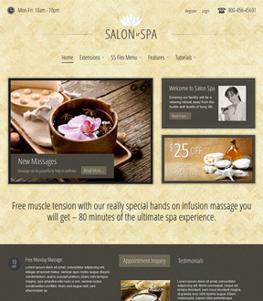 Salon n Spa Wordpress Club Theme